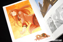 Ayakura Juu Illustrations Spice and Wolf - 7